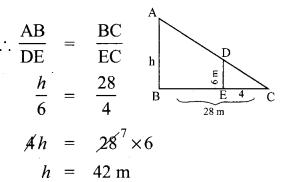 10th Geometry Exercise 4.1 Samacheer Kalvi